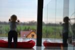 historia naszego domu, czyli architekta dom z prześwitem